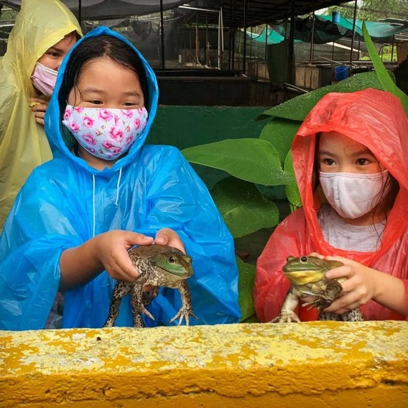 Jurong Frog Farm singapore