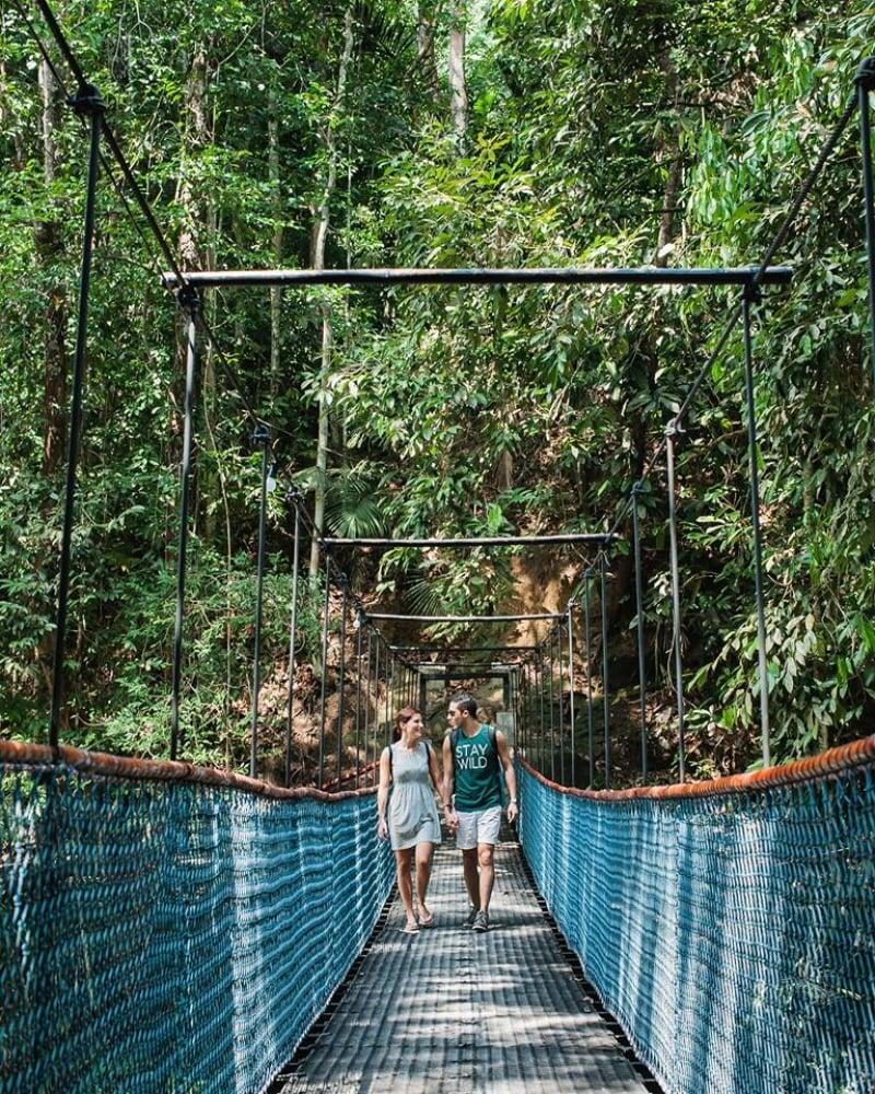 the sticks malaysia