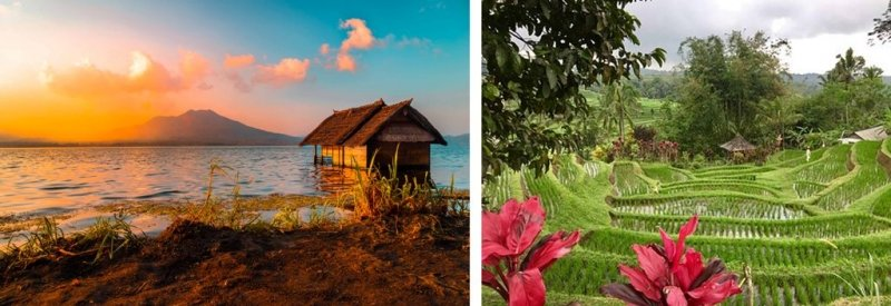 bali expectations vs reality
