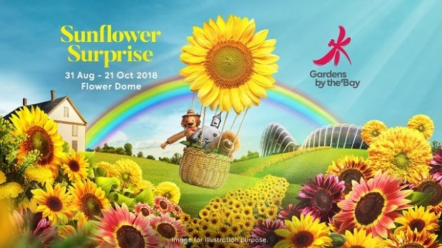 10% OFF Admission to the Conservatories of Gardens by the Bay for NTUC Cardholders