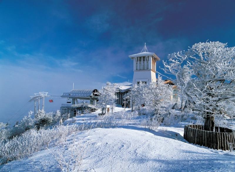 Yongpyong Resort - gangwon