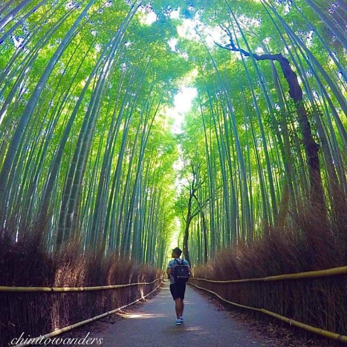 japan travelogue