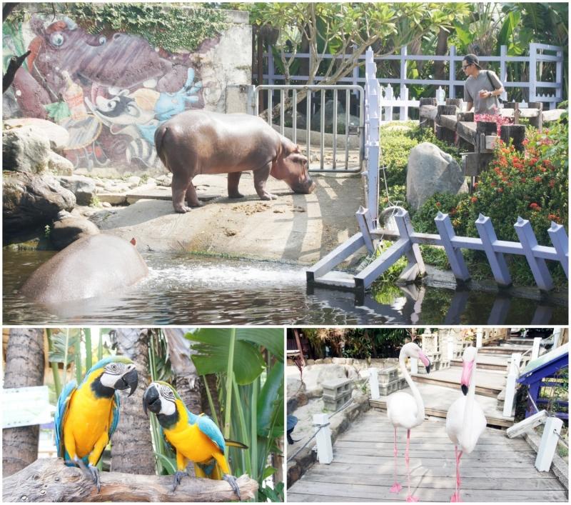 kỳ nghỉ với gia đình ở Đài Loan, sở thú
