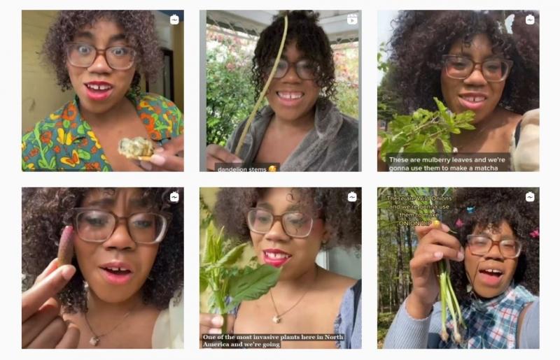 black forager instagram