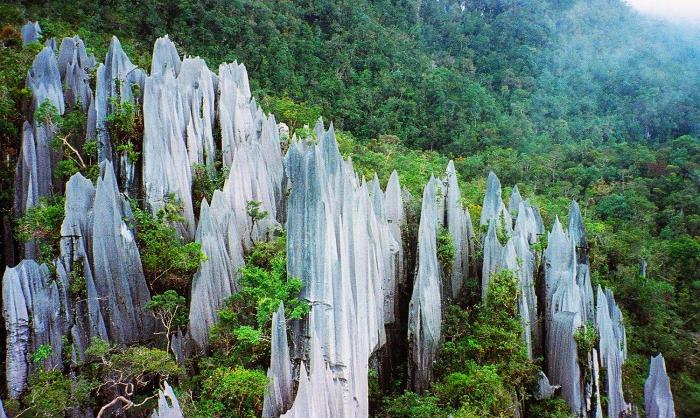 Công viên quốc gia Gunung Mulu