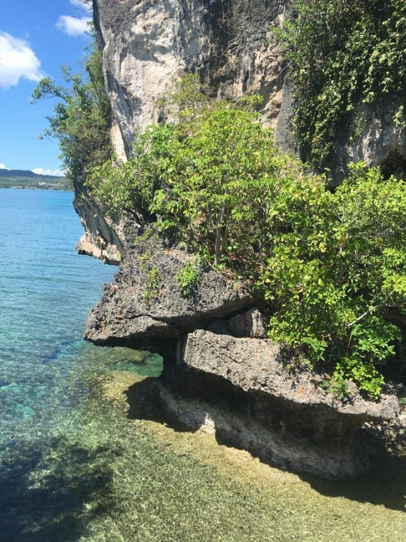10 places camotes