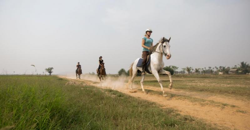 horseback riding at happy ranch