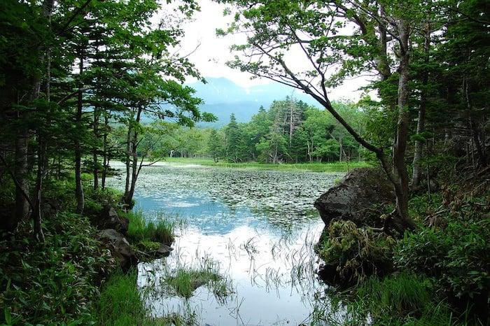 Shiretoko National Park japan