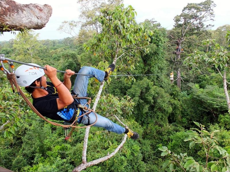 flight of the gibbon at angkor zipline