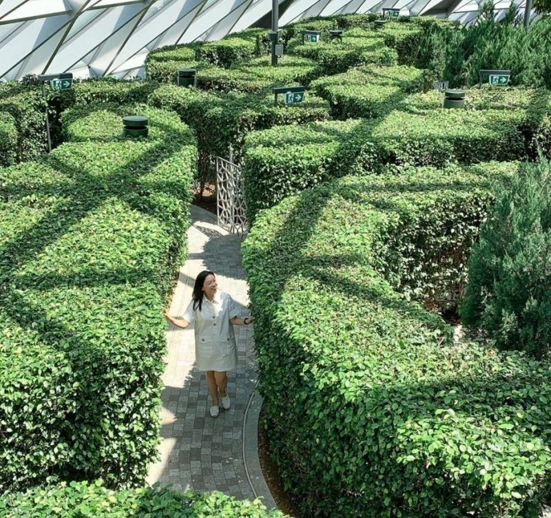 Hedge Maze jewel changi attractions date ideas singapore best deals