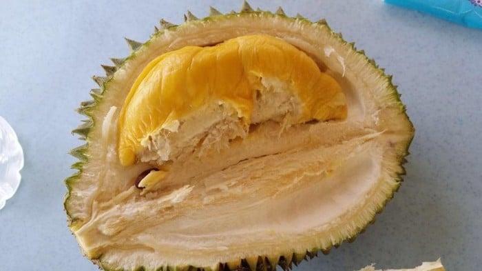 1Malaysia Musang King Durian Orchard Farm