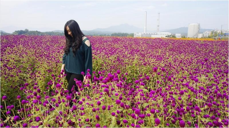 Yangju Nari Gongwon