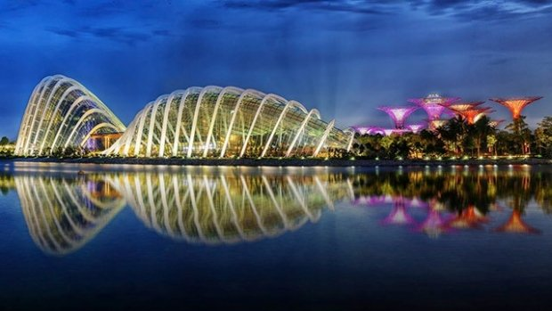 View the Supertrees up close at Gardens by the Bay with MasterCard