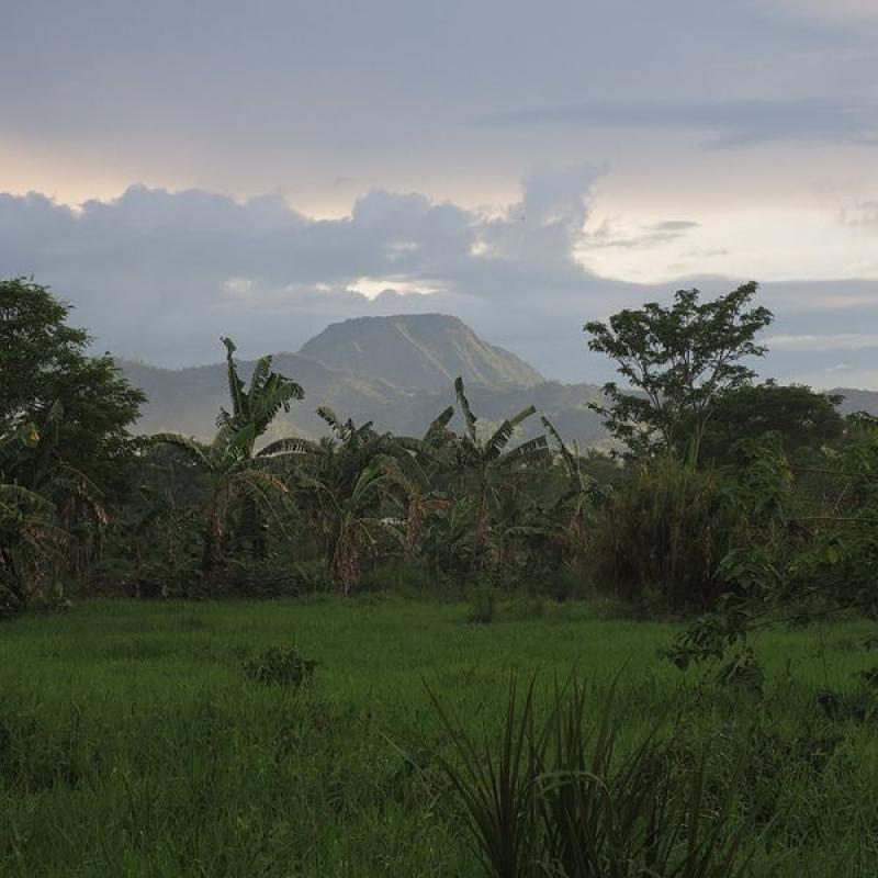 Mt. Mayapay