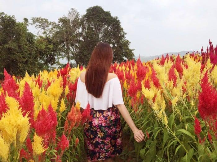 cebu tourist spots
