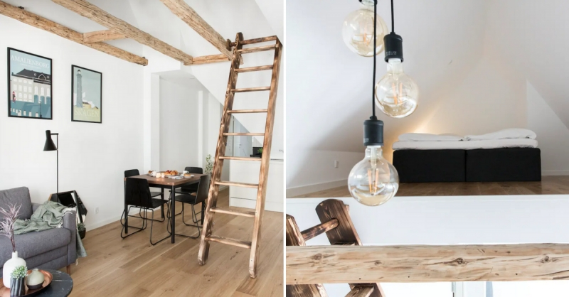 pet friendly airbnb copenhagen