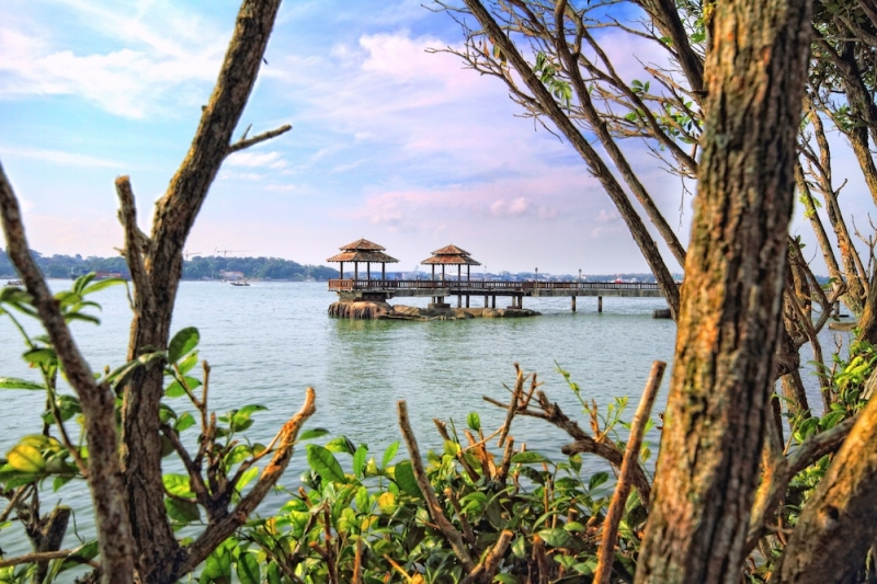 Singapolidays and Cruisec-cation