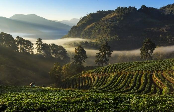 thailand mountains