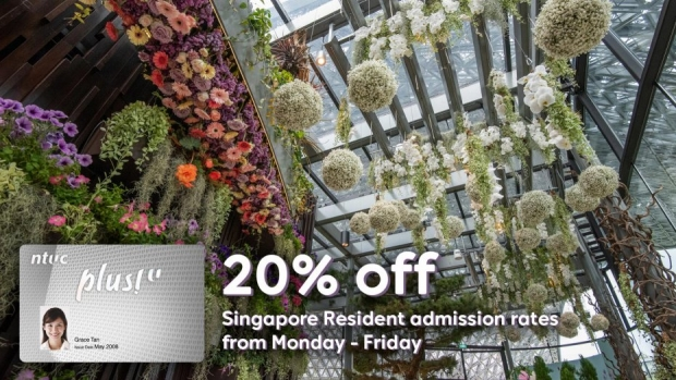 NTUC Plus! Card Promotion in Gardens by the Bay Singapore