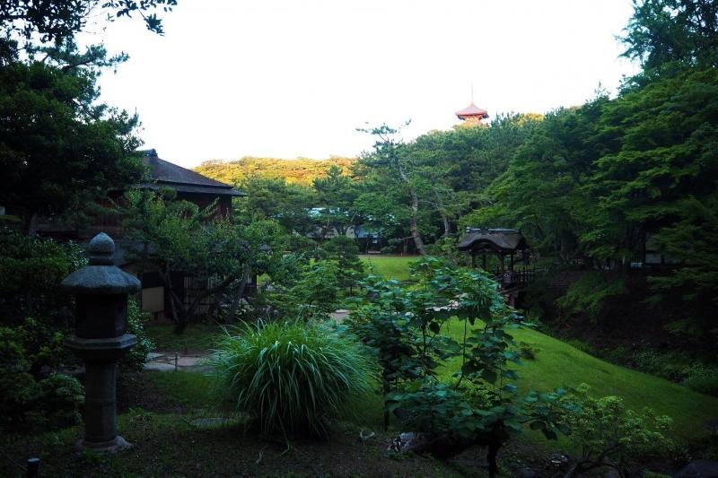 fireflies tokyo