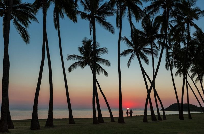 Couple walks amongst beach palms, Molokai, Hawaii